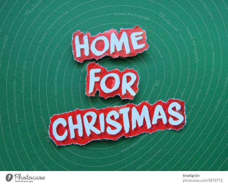 Home for Christmas Weihnachten & Advent Familie & Verwandtschaft Zusammensein zu Hause Feste & Feiern gemeinsam Tradition heimelig besinnlich Winter Feiertage