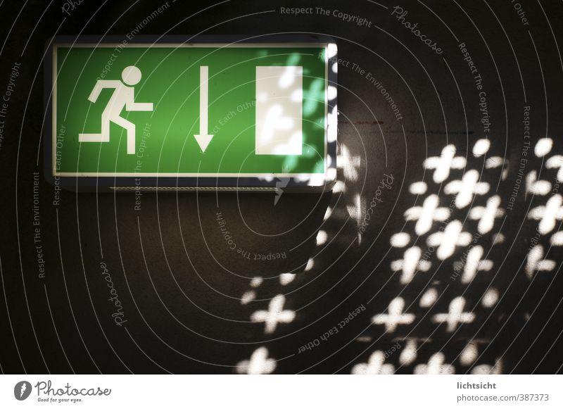 Runter zum Licht Mauer Wand Treppe Zeichen Schilder & Markierungen Hinweisschild Warnschild Pfeil grün schwarz weiß abwärts Wegweiser Richtung richtungweisend