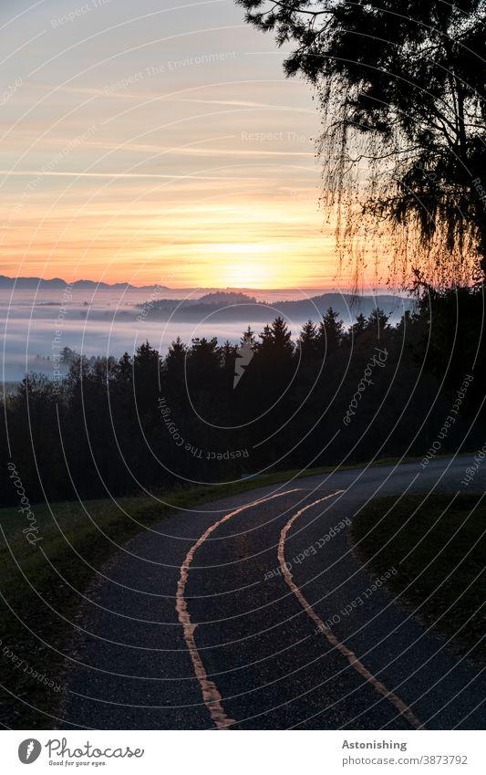 Sonnenuntergang im Nebel Wolken Natur Landschaft Straße Weg Kurve Pfad Wald Umwelt Nadelwald Hügel Österreich Mühlviertel Gras Abend Dämmerung Alpen orange