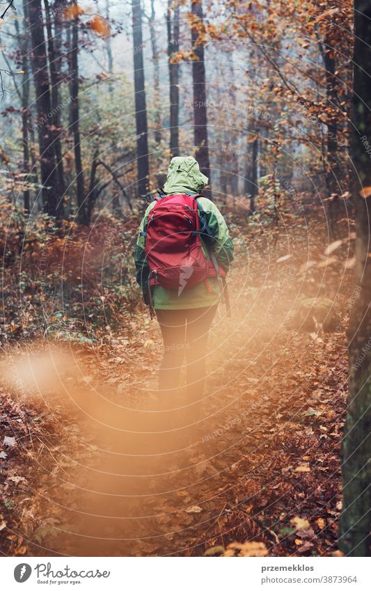 Frau mit Rucksack wandert an einem herbstlich kalten Tag durch den Wald aktiv Aktivität Abenteuer Herbst Backpacker Ausflugsziel genießen Erkundung erkunden