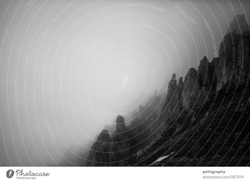 Überraschung in der Nebelwand Natur Landschaft Erde Himmel Wolken Sommer schlechtes Wetter Hügel Felsen Alpen Berge u. Gebirge Gipfel Surrealismus träumen