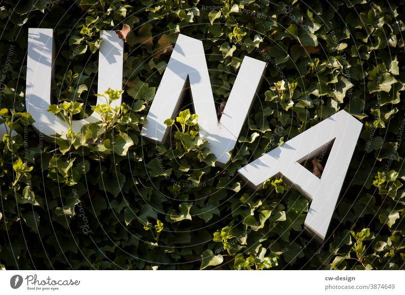 UNA - Schriftzug an begrünter Hausfassade una Buchstaben weiß Natur Fassade Fassadenbegrünung Grüne Lunge Außenaufnahme grüne lunge Umwelt Blatt Pflanze Garten