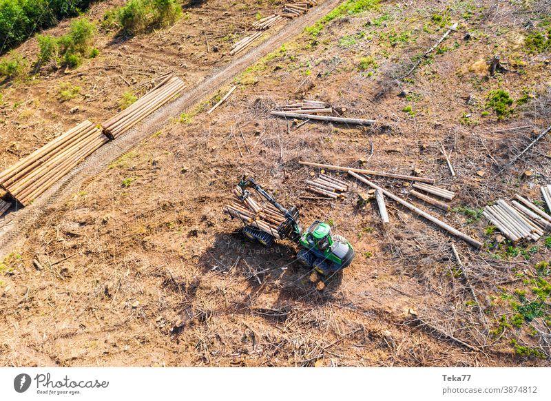 Harvester von Oben 2 klimawandel Borkenkäfer sommer maschine holzfällung holzfäller moderner harvester waldboden
