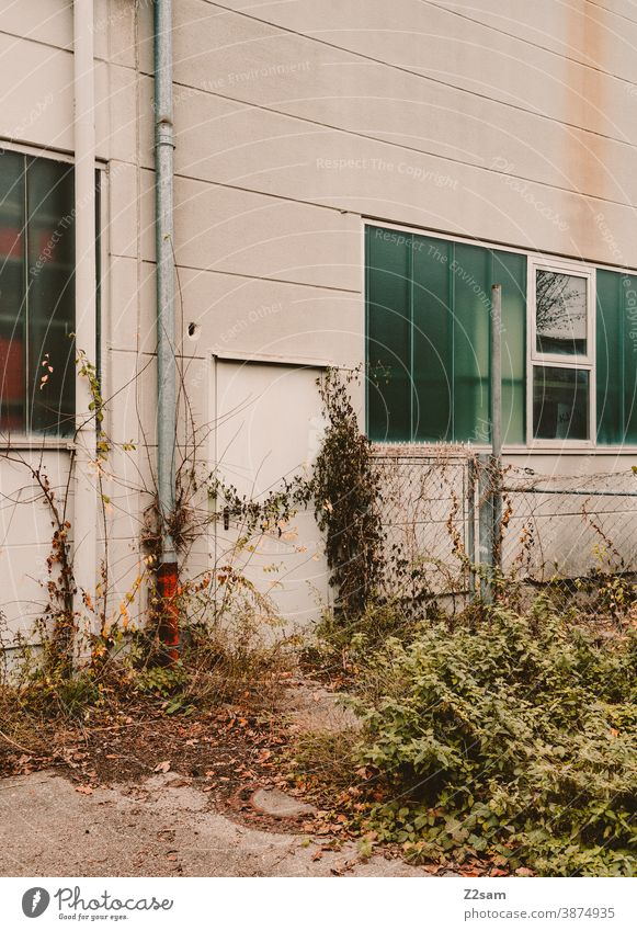 Verwachsene Einfahrt in einem Industriegebiet industrie architektur industriehalle industriegebiet tor fabrik fabrikhalle linien minimalismus beton einsam