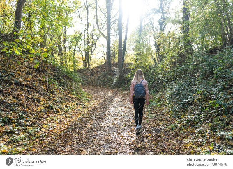 Junge Frau spaziert durch herbstlichen Wald Spaziergang Herbst Natur Baum Landschaft Wege & Pfade wandern gehen Erholung Einsamkeit Außenaufnahme Mensch