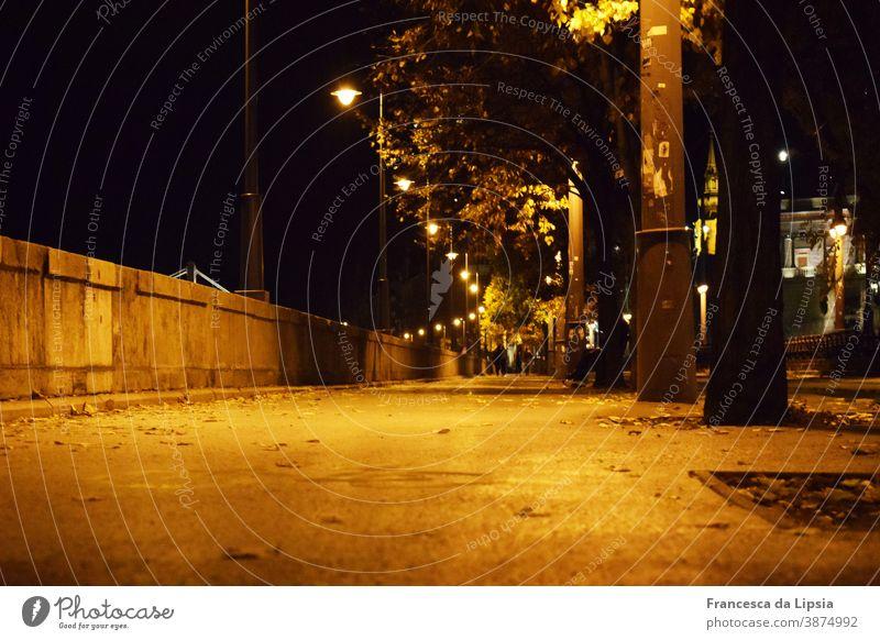 Uferpromenade in Budapest ufer Promenade Nacht Laternen Froschperspektive Wege & Pfade Licht Straße dunkel Langzeitbelichtung Lampe Straßenbeleuchtung