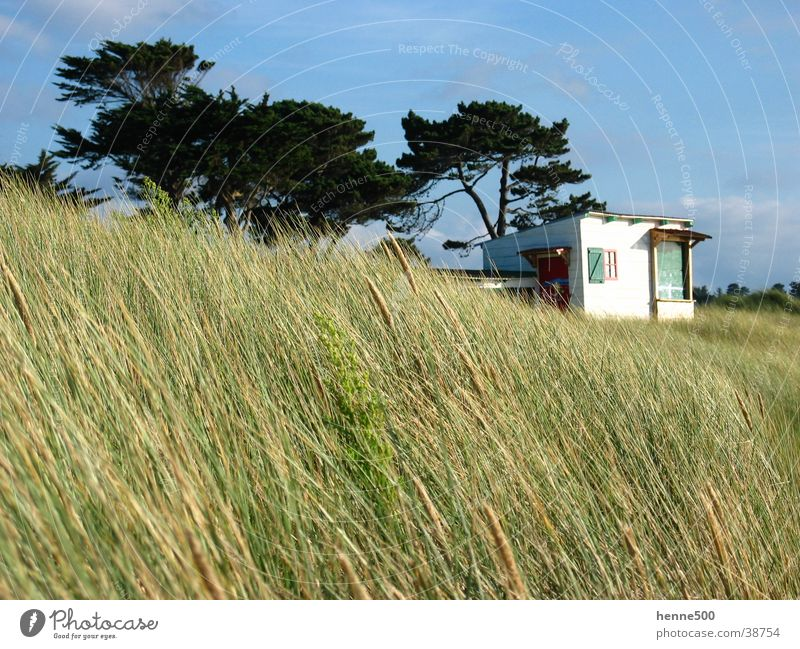 Düne in Bretagne Sommer Strand Wind Europa Frankreich Stranddüne Bretagne