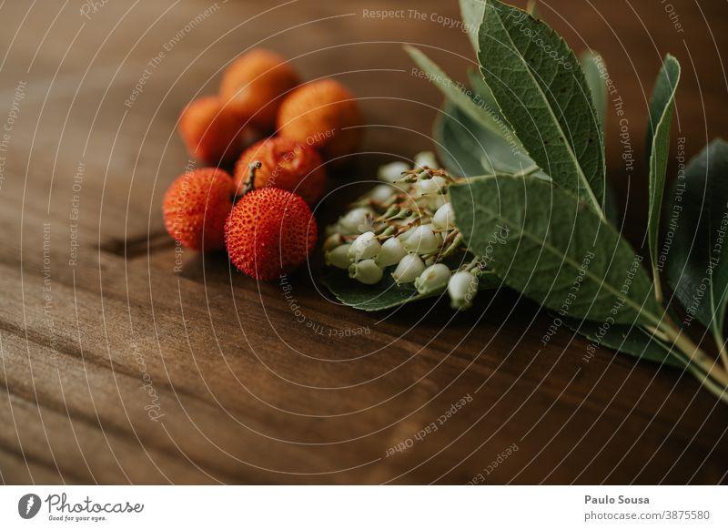 Arbutus unedo Obst und Blumen Erdbeerbaum Ericaceae mediterran Mediterrane Küche Frucht Bioprodukte organisch Vitamin Diät Gesunde Ernährung Farbfoto lecker