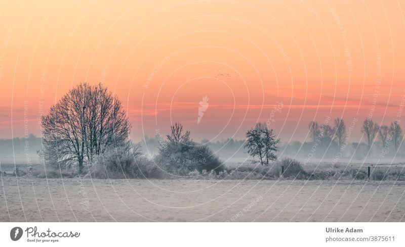 Winterlandschaft Teufelsmoor bei Worpswede / Bremen im herrlichen Sonnenaufgang Nebel Deutschland Osterholz-Scharmbeck Raureif ruhig weiß Himmel Wolken Klima