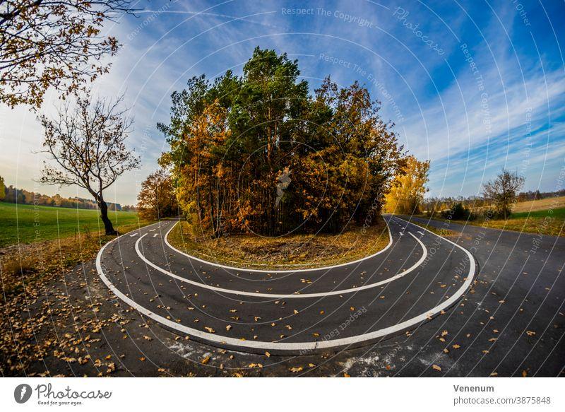 Fahrradweg im Herbst Weg Licht Schatten Baum Bäume Saison Deutschland Nachmittag Radweg Himmel lassen Blätter