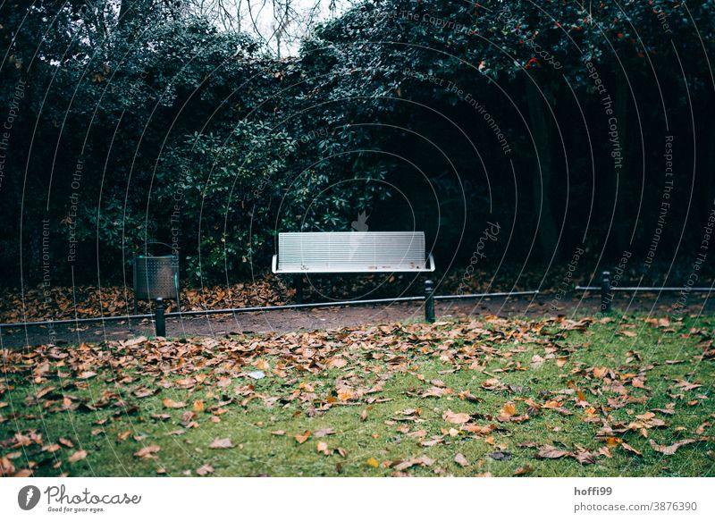 verlassenen Parkbank im düsteren Park Bank Mülleimer Tristesse Papierkorb Herbst grün Schatten Blatt Herbstlaub Herbstfärbung herbstlich herbstliche Farben