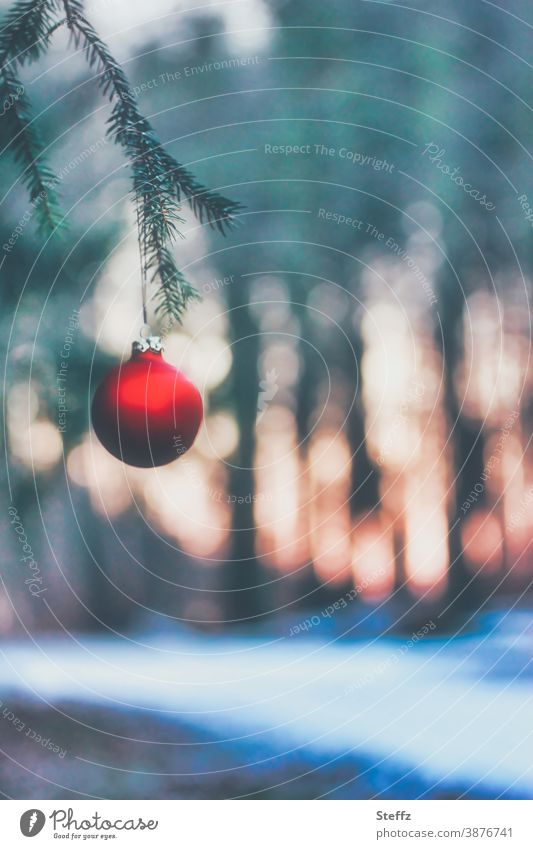 bald Weihnachten Advent Christbaumkugel Weihnachten & Advent Tannenzweig weiße Weihnachten Weihnachtsdekoration christliche Tradition traditionell Kultur