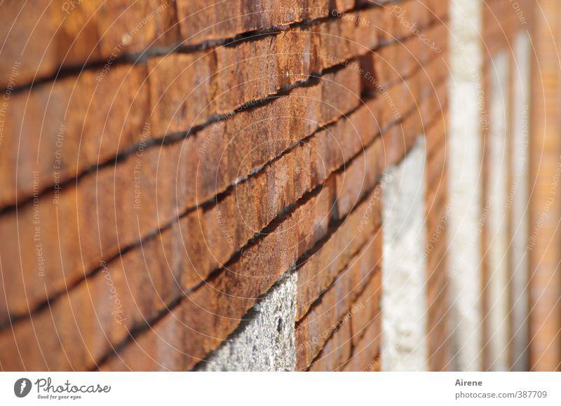 rückläufig weiß rot Fenster Wand Mauer Linie Fassade Tür Ordnung Perspektive fest Backstein deutlich parallel massiv ziegelrot