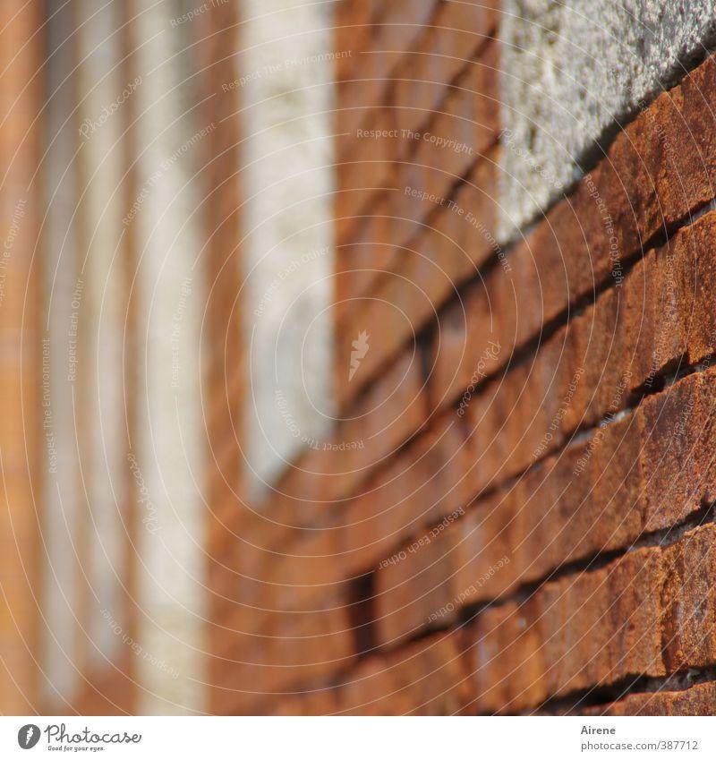fliehende Fassade Stadt weiß rot Fenster Wand Mauer Fassade Ordnung ästhetisch planen Klarheit Backstein Altstadt ziegelrot Backsteinfassade Backsteinhaus
