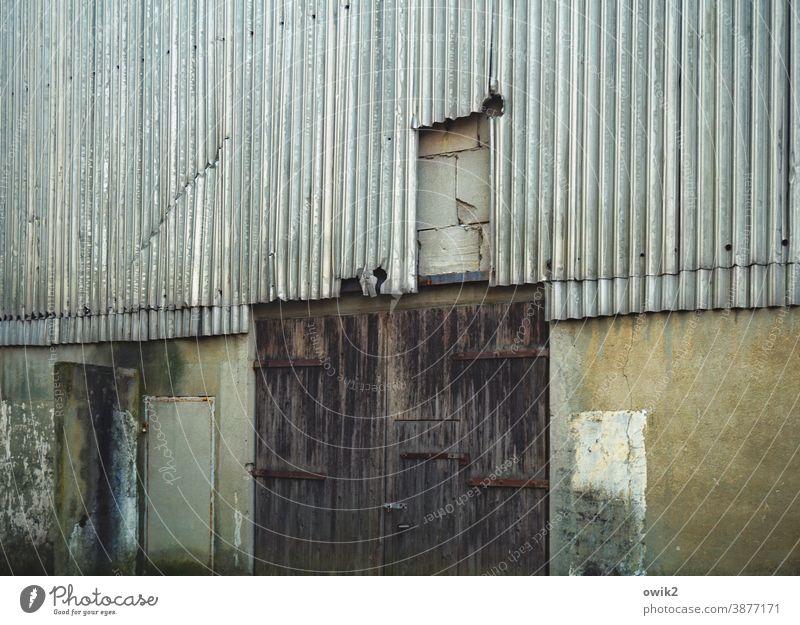 Oll Wellblechwand Mauer Lagerhaus Lagerhalle Halle Metall Farbfoto grau Detailaufnahme Muster Strukturen & Formen Außenaufnahme Menschenleer Textfreiraum links