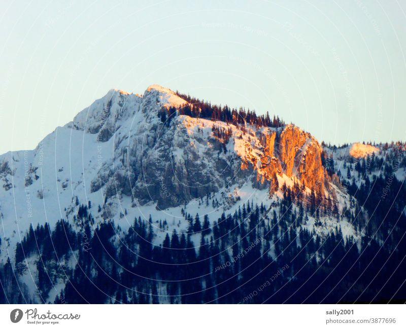 letzte Sonnenstrahlen des Tages... Kampenwand Chiemgau Chiemgauer Alpen Oberbayern Bayern Berge u. Gebirge Winter Schnee Sonnenuntergang Alpenglühen Gipfel