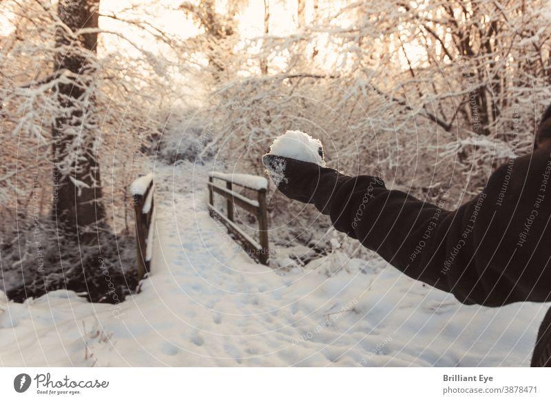 Hand mit Schneeball vor schneebedeckter Holzbrücke Hintergrund schön Schönheit Brücke kalt Umwelt Wald frisch Landschaft Licht natürlich Natur niemand im Freien
