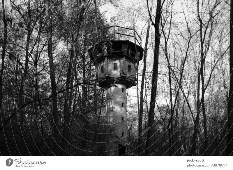 Verlorener Wachturm mitten im Wald Verfall Architektur lost places Herbst Baum Natur Vergangenheit Ruine historisch verfallen versteckt verdeckt DDR geheim