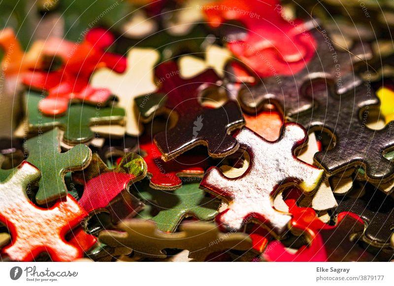 Das Leben ist bunt.... Puzzle Farbfoto Spielen Innenaufnahme Nahaufnahme mehrfarbig Kinderspiel Freizeit & Hobby Schwache Tiefenschärfe
