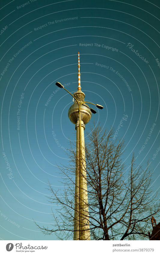 Fernsehturm hinter einer Laterne alex alexanderplatz architektur berlin büro city deutschland fernsehturm froschperspektive hauptstadt haus himmel hochhaus