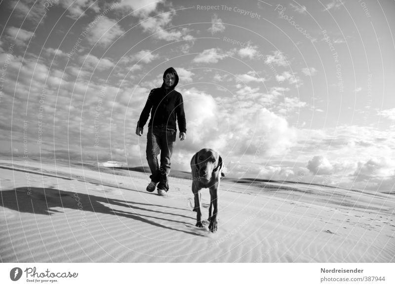 Mann mit Hund auf einer Wanderdüne in Dänemark Ferien & Urlaub & Reisen Abenteuer Ferne Freiheit Expedition wandern Mensch Erwachsene Urelemente Sand Himmel