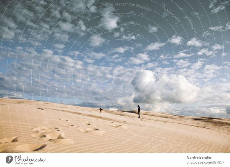 Spurensuche.... Hund Mensch Himmel Ferien & Urlaub & Reisen blau Sommer Sonne Landschaft Ferne gelb Wege & Pfade Freiheit Sand Klima wandern Schönes Wetter