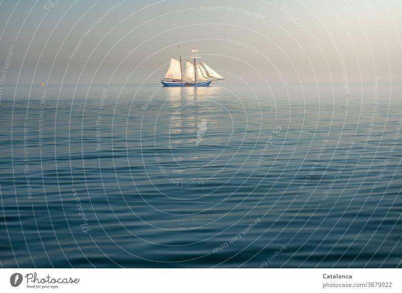 Ein Plattbodenschiff  auf dem IJsselmeer Segelboot Zweimaster segeln Meer Wasser Sommer Horizont Himmel Tag Tageslicht Wellen Dünung Nordsee Spiegelung