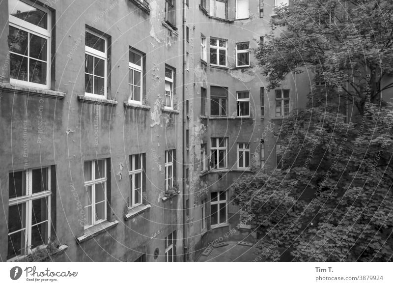 Hinterhof Prenzlauer Berg . Berlin Hof Schwarzweißfoto Menschenleer Stadt Stadtzentrum Haus Tag Hauptstadt Altstadt Außenaufnahme Fenster Altbau Gebäude Bauwerk