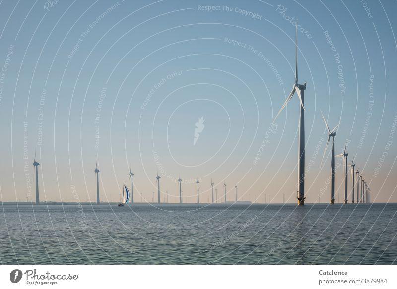 Offshore-Windpark im IJsselmeer mit Segelboot Meer Wasser Windräder Landschaft Horizont Segelyacht Himmel Tag Tageslicht schönes Wetter blau rosa
