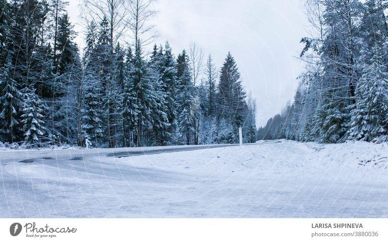 Verschneite Strasse im Winterwald. Wunderschöne frostig weisse Landschaft. verschneite Straße Saison Wald Eis Szene Weihnachten Baum Tag PKW frieren im Freien