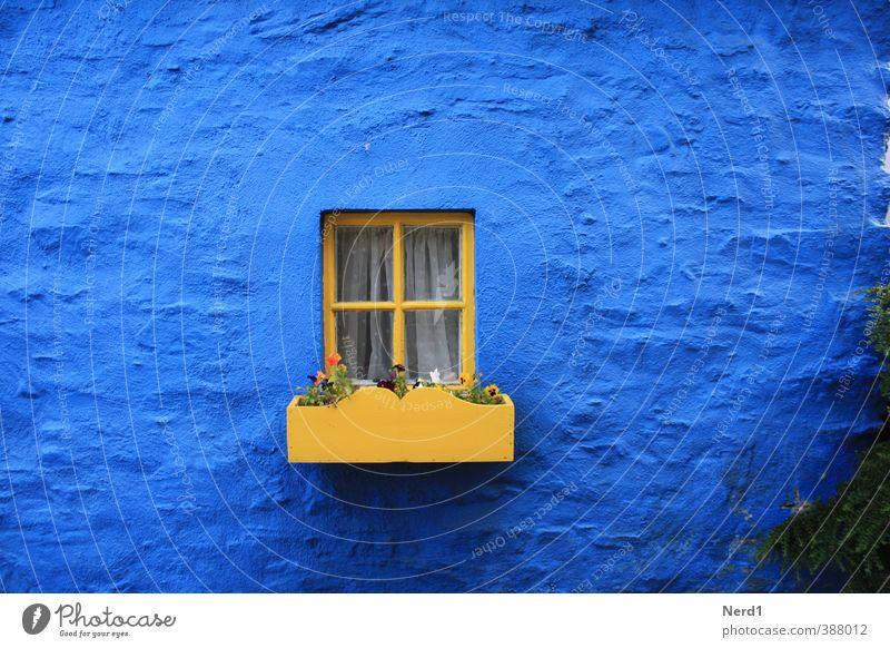 Fensterchen blau Haus gelb Wand Mauer Stein Fassade Glas historisch Dorf Blumentopf