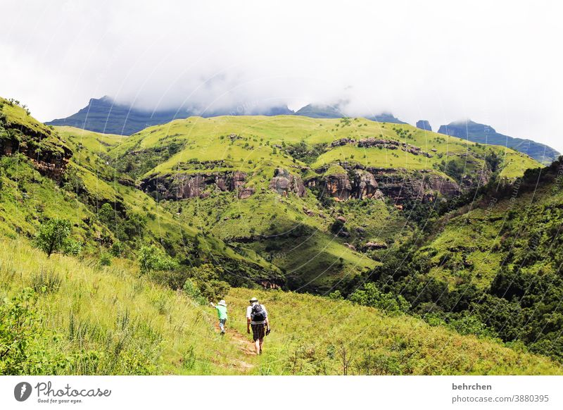 wandernde jungs III Sonnenlicht Kontrast Licht Tag Außenaufnahme Fernweh schön traumhaft Südafrika Drakensberge Farbfoto Sohn grün blau fantastisch exotisch