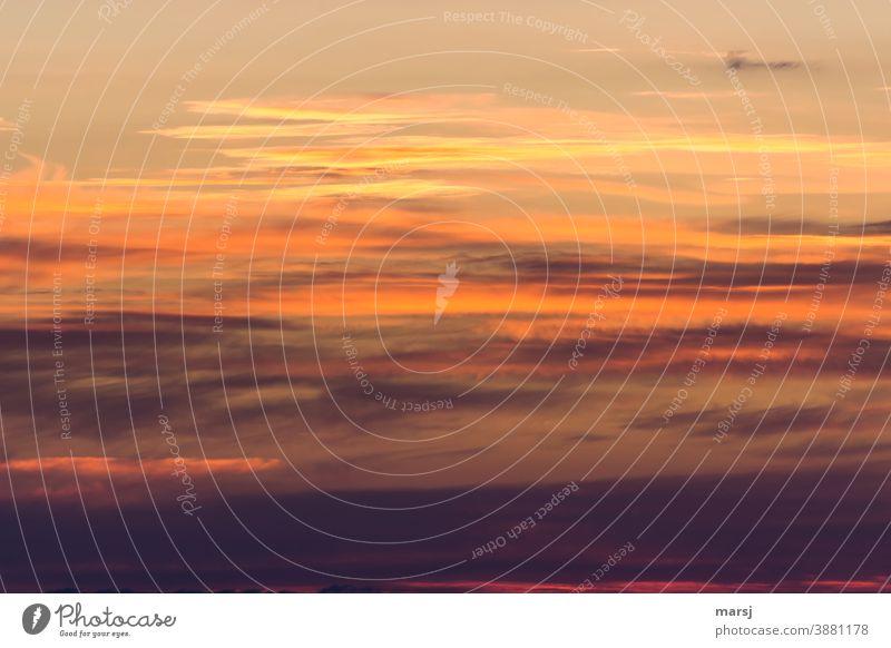 Wenn der Tag in den schönsten Farben beginnt und der Himmel zu brennen scheint. Sonnenaufgang Sonnenlicht Morgendämmerung Tagesanbruch Neuanfang Natur Wolken