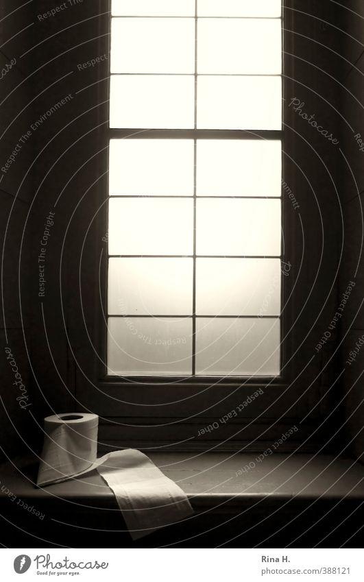 Unverzichtbar Fenster Fensterbrett authentisch Erholung Toilette Toilettenpapier Altbau ruhig Stillleben Innenaufnahme Sprossenfenster Kunst Gedeckte Farben
