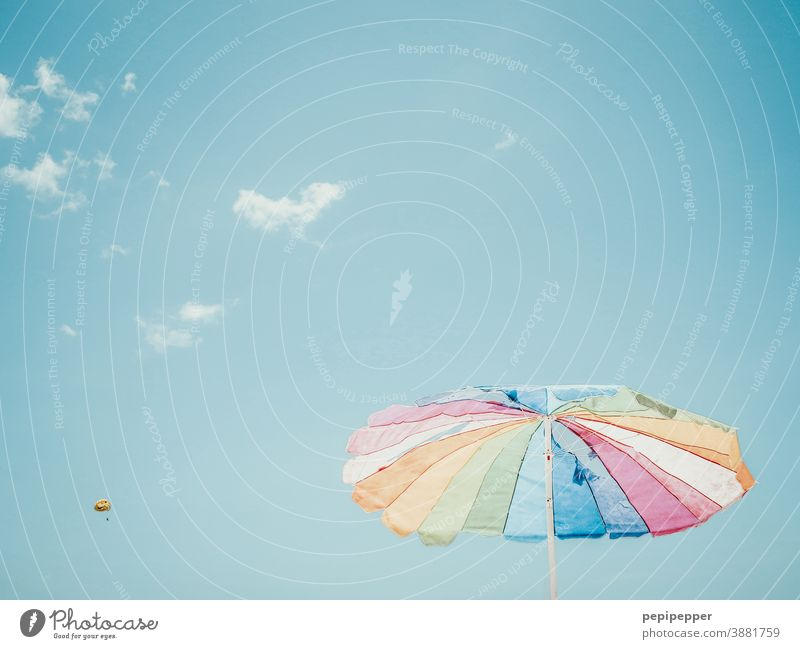 Sonnenschirm mit Paragleitschirm im Hintergrund Bunt Fallschirm Fallschirmspringer Himmel blau Außenaufnahme Freiheit Farbfoto Freude Sport fliegen