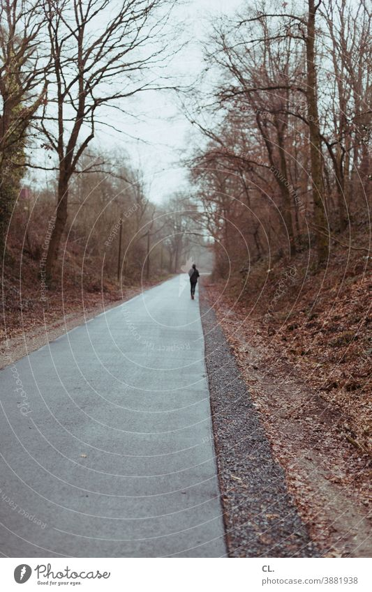 läufer laufen Joggen Jogger Läufer sport Sport Winter Wege & Pfade trist Ziel allein Einsamkeit Flucht Freizeitsport Wald Bäume Natur rennen Außenaufnahme