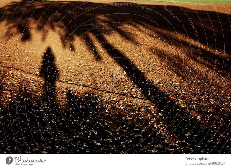 langer schräger Selfie Schatten mit Baumschatten auf leuchtend braunem Ackerboden ich Schattenbild Mensch Schattenwurf Schattenseite schattenmensch Silhouette