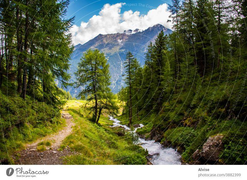 Bäche in den Südtiroler Alpen acht Österreich Tirol strömen szenische Darstellungen Szene fließend fallen Aufstieg Mut gefährlich Gipfel Sport Trekking