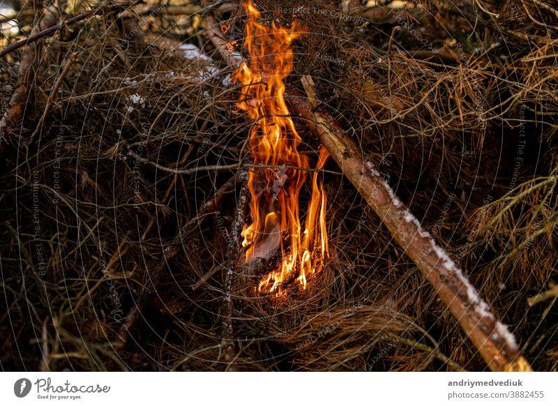 verbranntes Brennholz im Kamin und Feuer aus nächster Nähe Feuer brennt Rauch Feuerflamme Lager Textur Kohle Licht rot Hintergrund Freudenfeuer Lagerfeuer