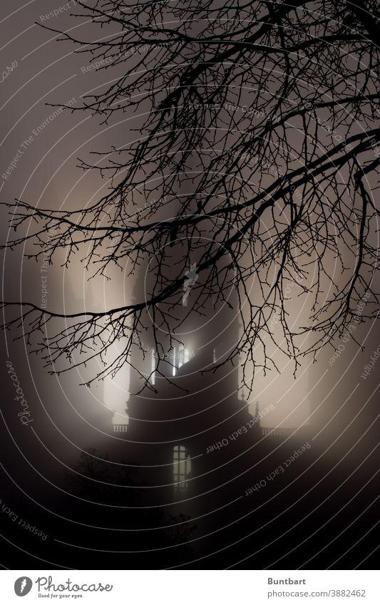 Schweriner Schloss im November-Nebel bei Sonnenaufgang Spuk Burg oder Schloss historisch Architektur Tourismus Nacht Außenaufnahme Sehenswürdigkeit Bauwerk