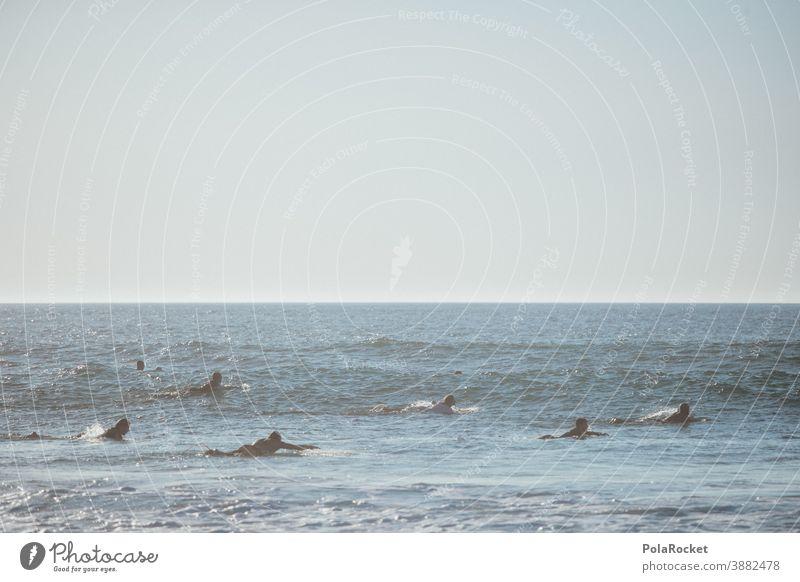 #A0# Auf in die Wellen Surfen Surfer Surfbrett Surfschule Surf-Wellen Surfers Paradise Gruppe Sport Wassersport Meer Strand Außenaufnahme sportlich Neoprenanzug