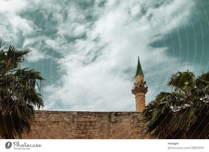 Moschee - Minarett eingerahmt von Palmen Israel Islam Christentum Moslem Gläubige Religion & Glaube Außenaufnahme Sehenswürdigkeit Ferien & Urlaub & Reisen
