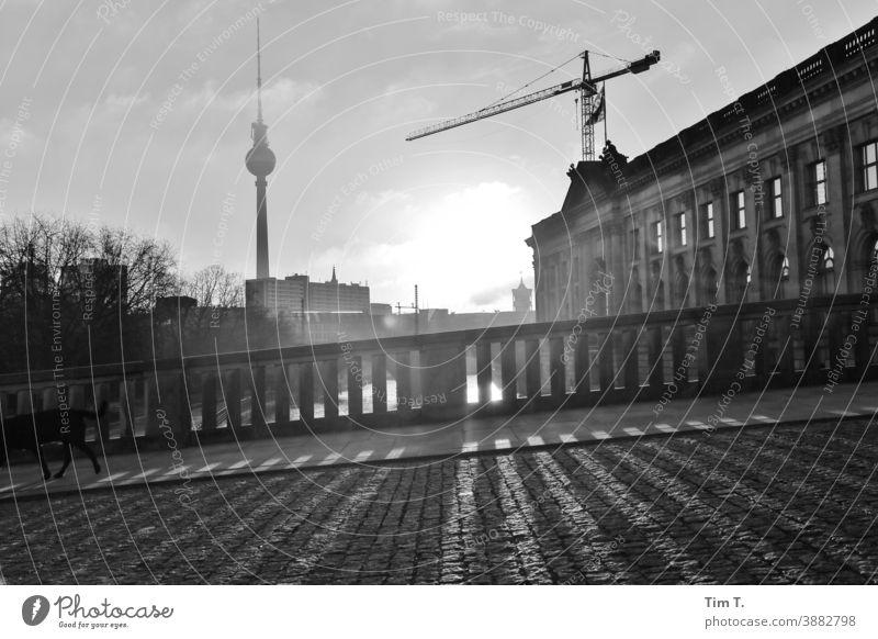 Winter in Berlin Mitte an der Spree . Die Morgensonne wirft Schatten. River Fluss Wasser Hauptstadt Außenaufnahme Stadt Menschenleer Stadtzentrum