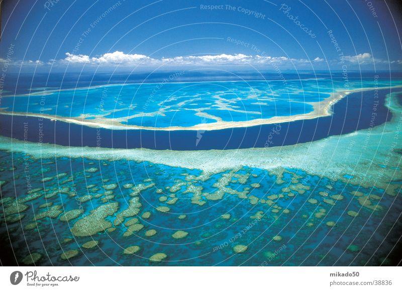 hardyreef_whitsundays Wasser grün blau Wolken träumen Australien Riff