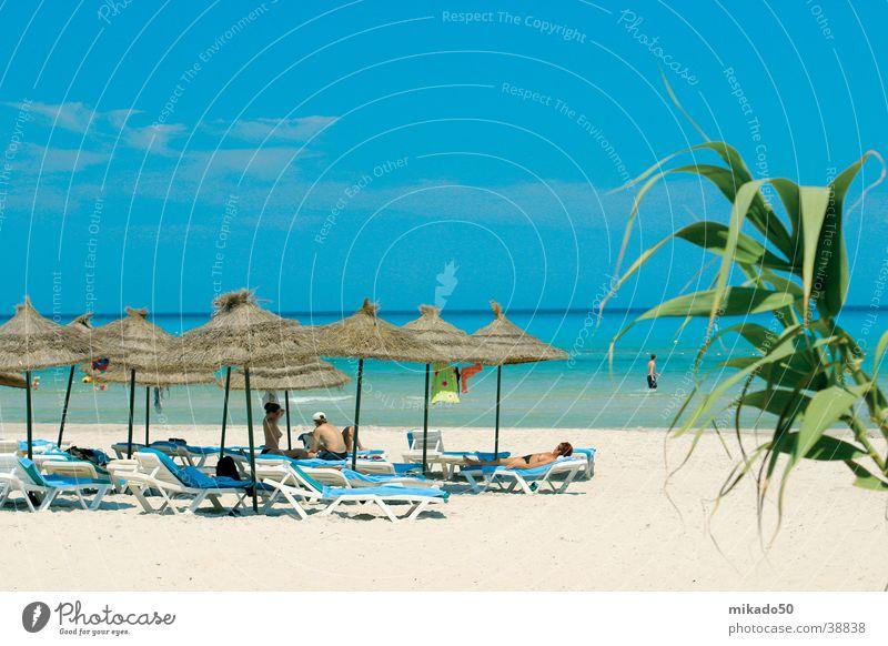 TraumBeach Mensch Wasser Himmel Erholung Sand Sonnenschirm Palme beige Moral