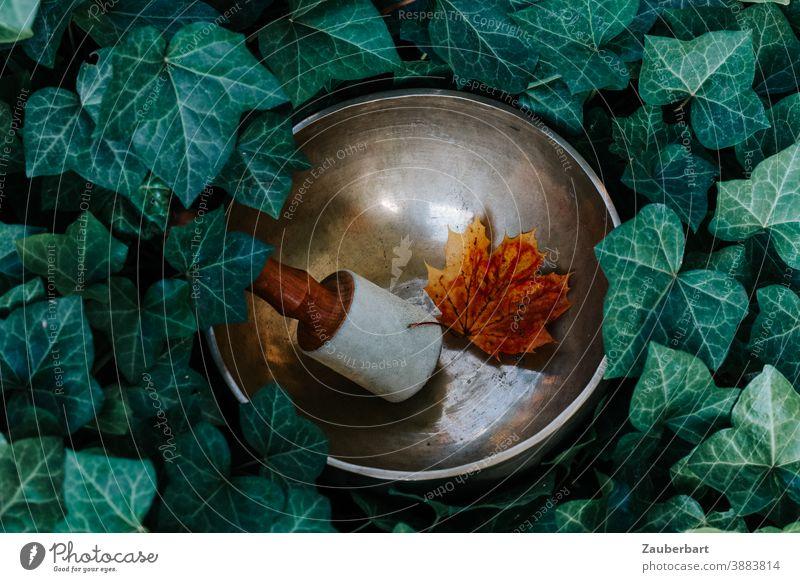 Klangschale mit Klöppel und Herbstblatt im Efeu Blatt Sonne Meditation Wellness Entspannung Schalen & Schüsseln Zufriedenheit ruhig harmonisch Erholung