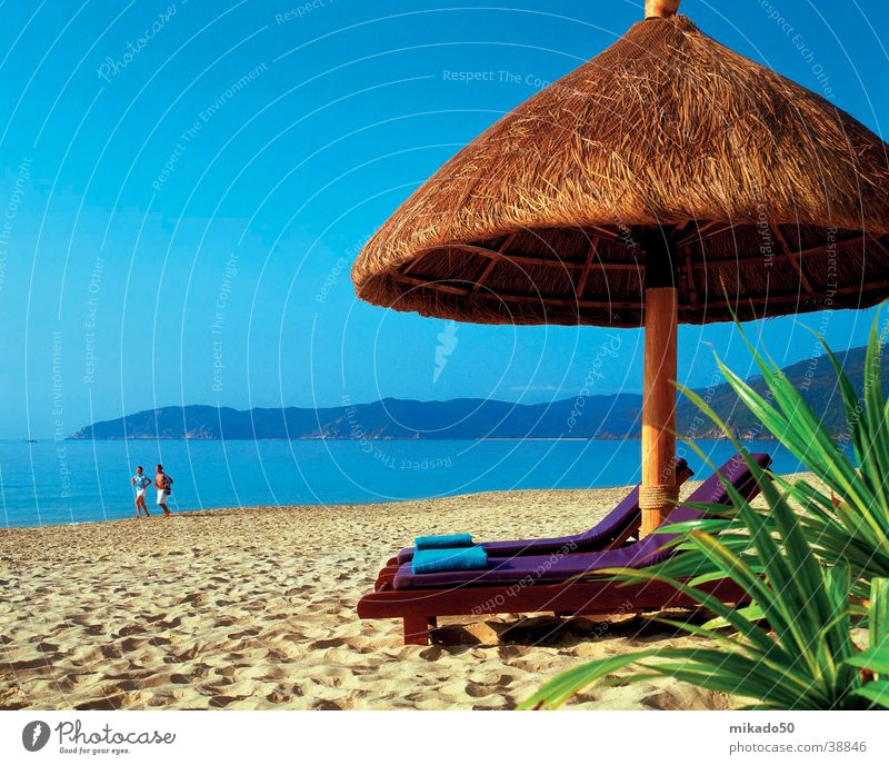 ...davon träumn wir doch alle...! Strand Sonnenschirm grün Zufriedenheit Sand Wasser blau Kania