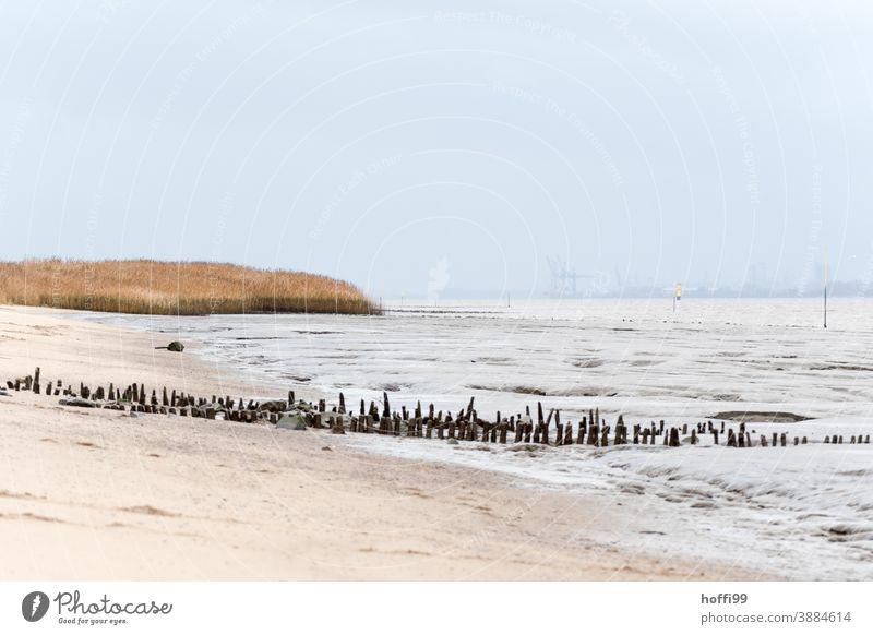 Ebbe am Weserstrand, die Buhnen sind schon ziemlich runtergekommen Buhnenreste ebbe und flut Winter Nebel Nebelschleier Sand Wasser Strand Meer Flut Küste