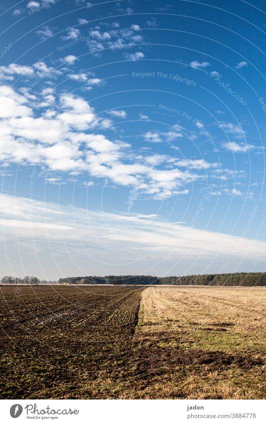 zwei-felder-wirtschaft. Feld Wiese Acker Natur Landschaft Umwelt Menschenleer grün Ackerbau Landwirtschaft Wolken Wachstum Farbfoto blau Himmel Schönes Wetter