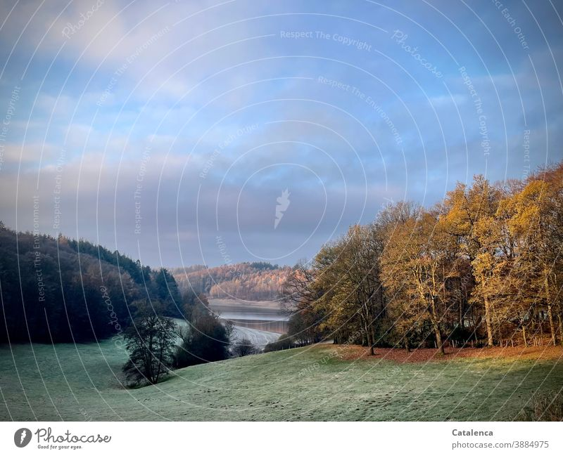 Frost liegt auf der Wiese, den dunklen Fichten, dem Herbstwald. Die Sonne steigt und beleuchtet die Landschaft  um den Stausee . Natur Winter Raureif Kälte